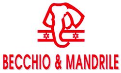 BECCHIO Y MANDRILE